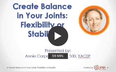 CE Workshop | Create Balance in Your Joints: Flexibility or Stability