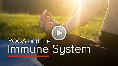 The Immune System and Yoga