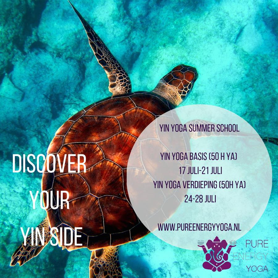 Yin Yoga summer school