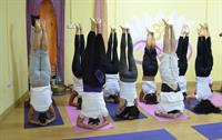 Some pictures of Yoga Teacher Training Course