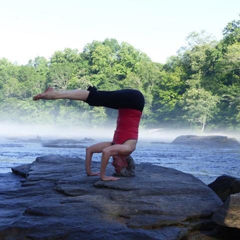 photo viewer  yoga alliance