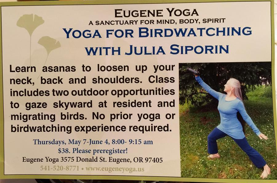 Yoga for Birdwatching 2015