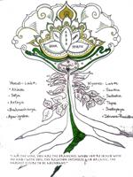 Royal Path of Yoga Chart by Gina Tricamo